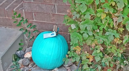 Teal pumpkins have been set on porches for the Halloween season. Teal pumpkins are being used to represent houses that are handing out non-food items to trick-or-treaters.